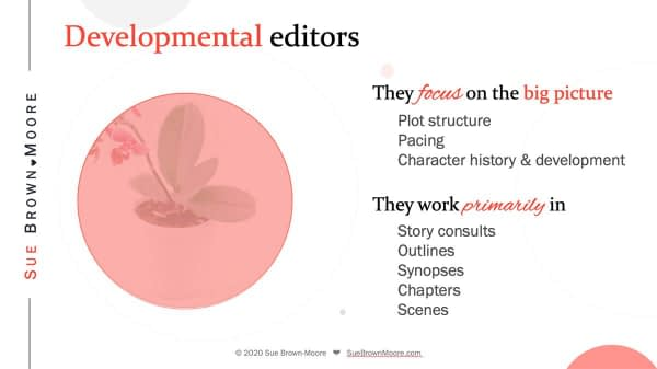 The main responsibilities of developmental editors in fiction